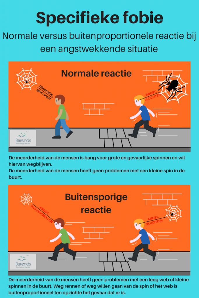 Specifieke fobie symptomen. Normale reactie versus buitenproportionele reactie.