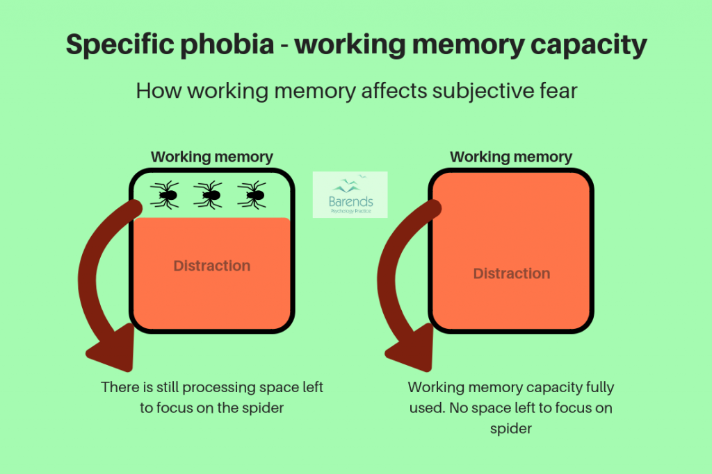 How working memory affects subjective fear. Coping with phobias.