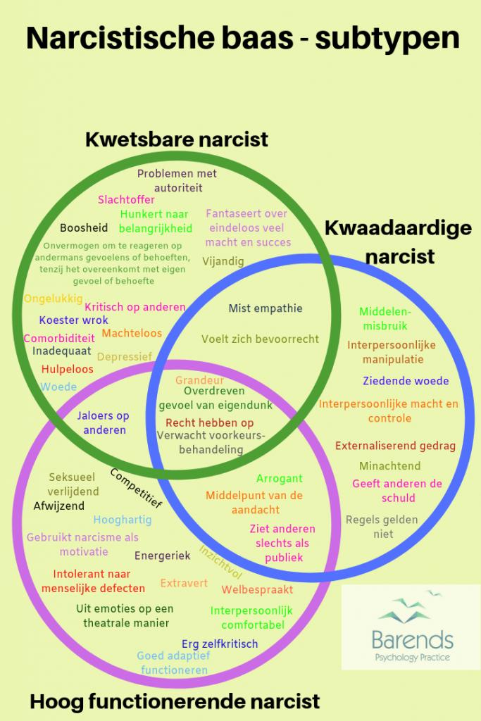 Narcistische baas - subtypen kwaadaardige narcist, kwetsbare narcist en de hoog functionerende narcist